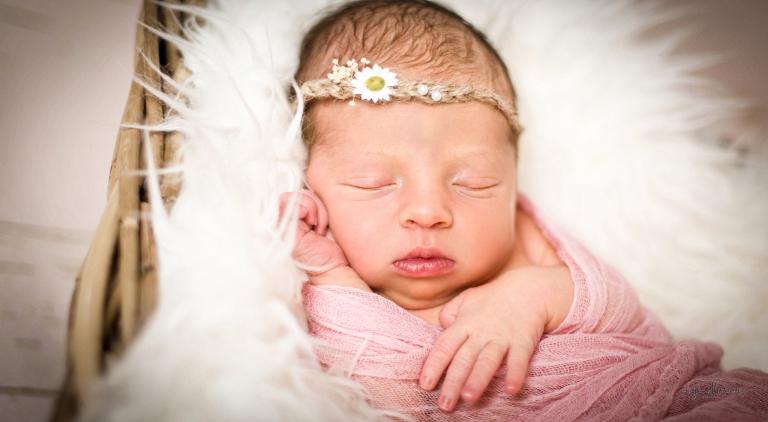Portfolio Babyfotografie