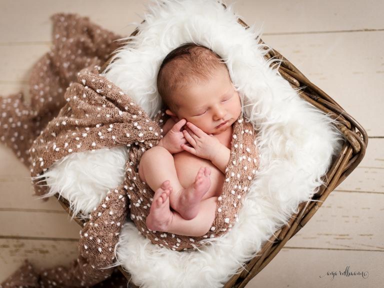 babyfotografie kassel
