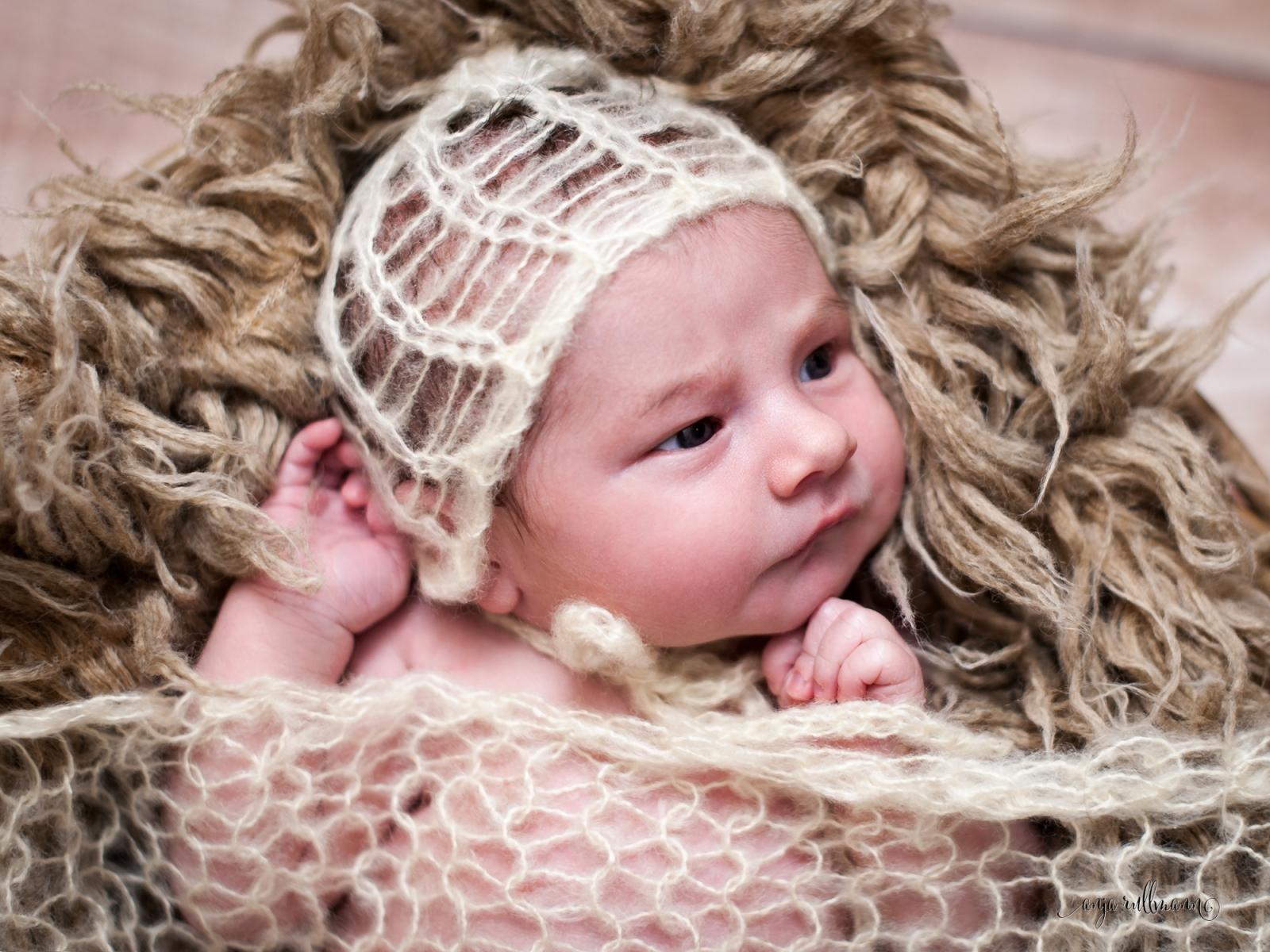 mila newborn fotograf kassel